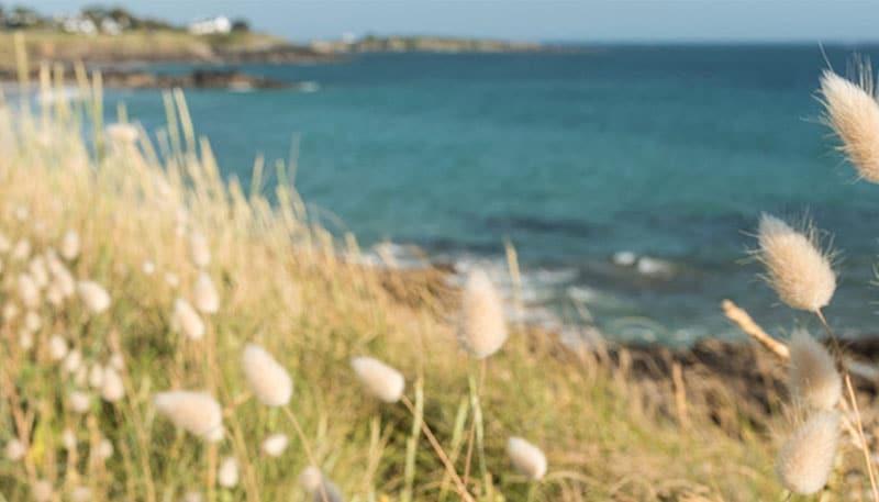 Bretagne Cornouaille Océan